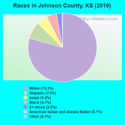 Johnson County races chart