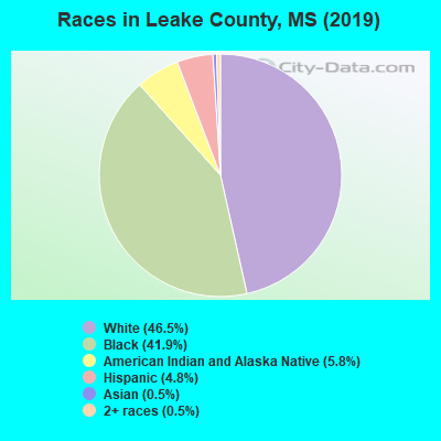 Leake County races chart