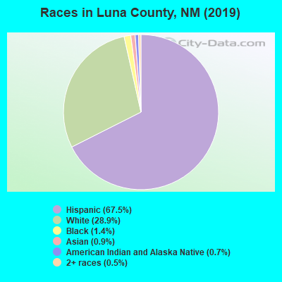 Luna County races chart