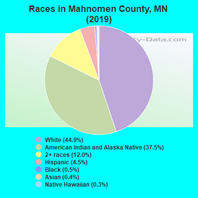 Mahnomen County races chart
