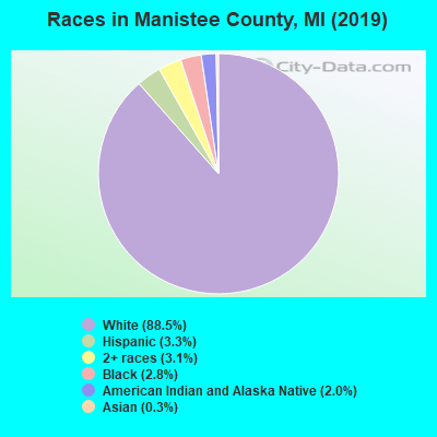 Manistee County races chart