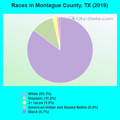 Montague County races chart
