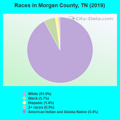 Morgan County races chart