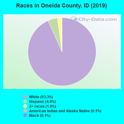 Oneida County races chart