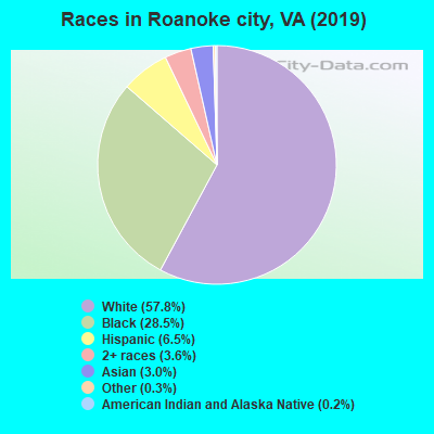 Races in Roanoke city, VA (2017)