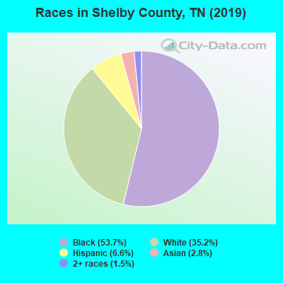 Shelby County races chart