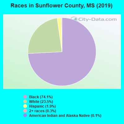 Sunflower County races chart