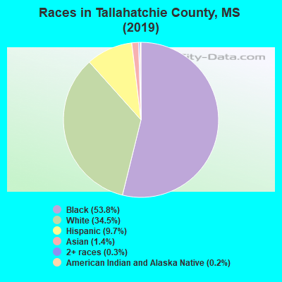 Tallahatchie County races chart