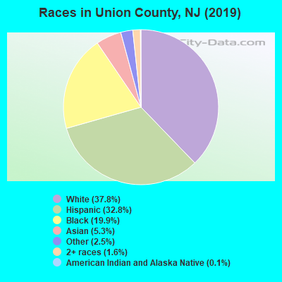 Races in Union County, NJ (2019)