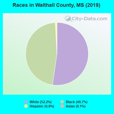 Walthall County races chart