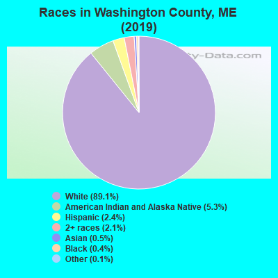 Races in Washington County, ME (2017)