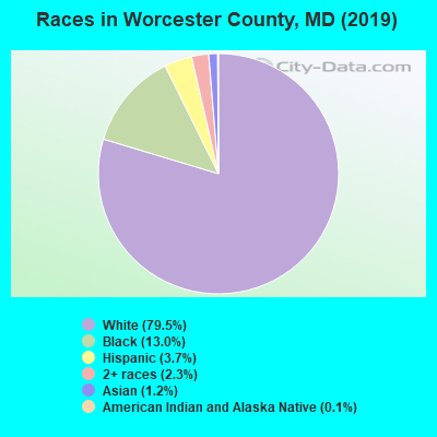 Worcester County races chart