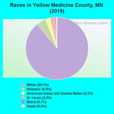 Races in Yellow Medicine County, MN (2017)