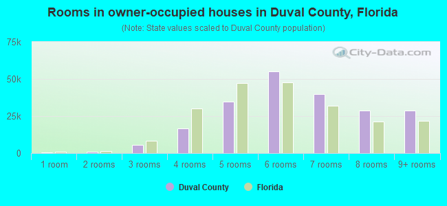 Rooms in owner-occupied houses in Duval County, Florida