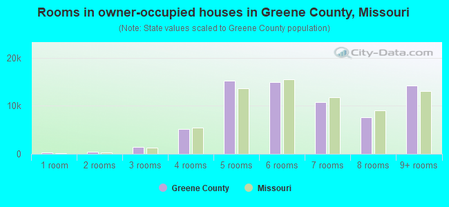 Rooms in owner-occupied houses in Greene County, Missouri