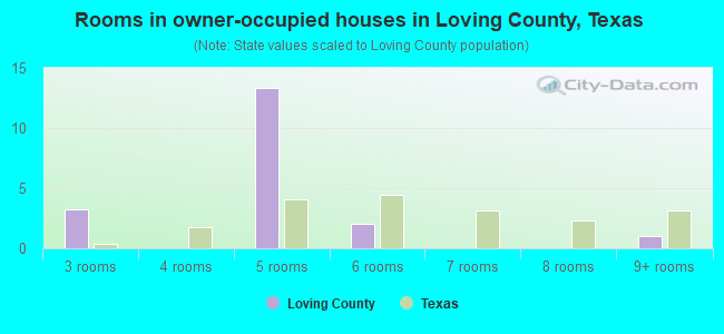 Rooms in owner-occupied houses in Loving County, Texas