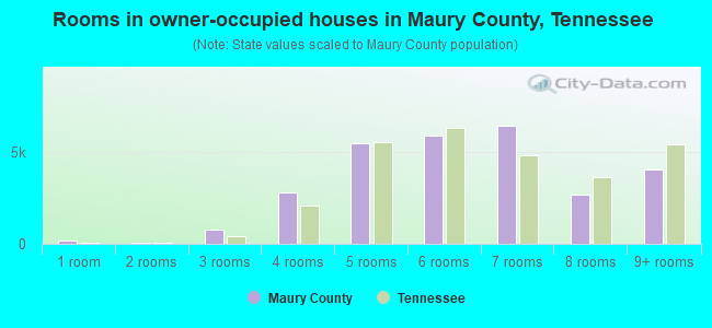 Rooms in owner-occupied houses in Maury County, Tennessee