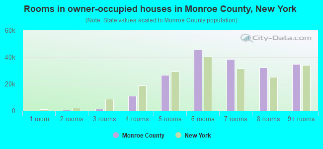 Rooms in owner-occupied houses in Monroe County, New York