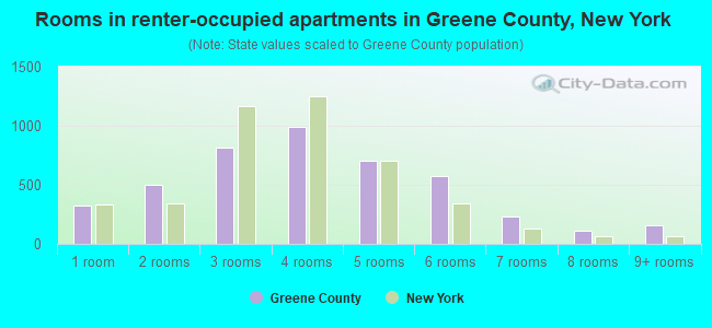 Rooms in renter-occupied apartments in Greene County, New York