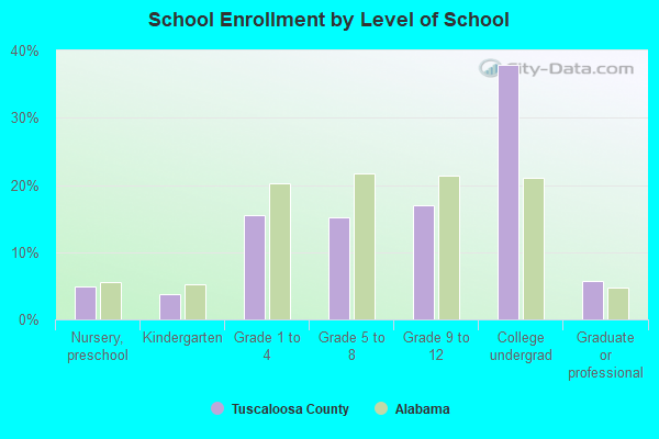 School Enrollment by Level of School