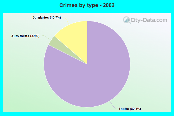 Crimes by type - 2002