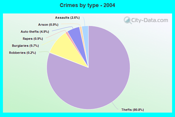 Crimes by type - 2004