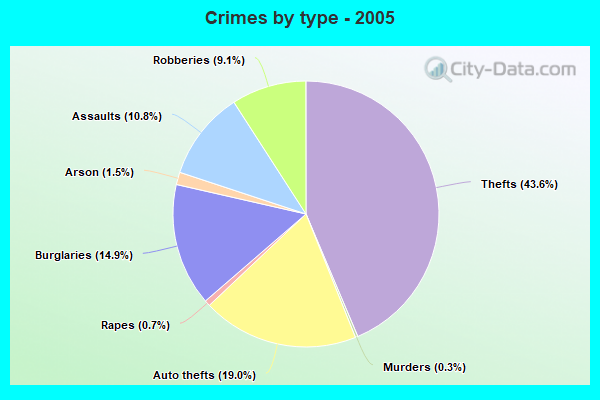 Crimes by type - 2005
