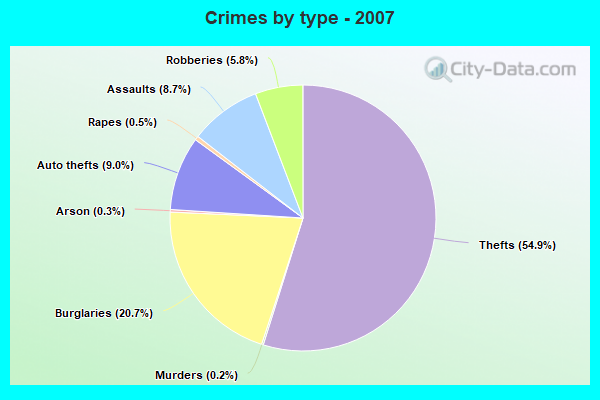 Crimes by type - 2007