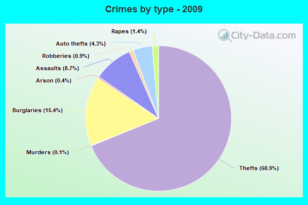 Crimes by type - 2009