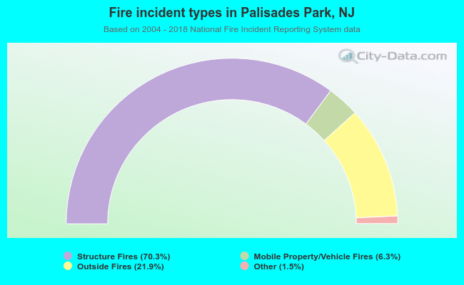 Fire incident types in Palisades Park, NJ