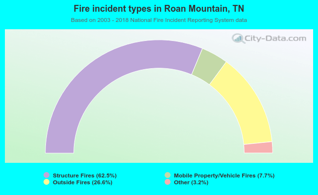 Fire incident types in Roan Mountain, TN