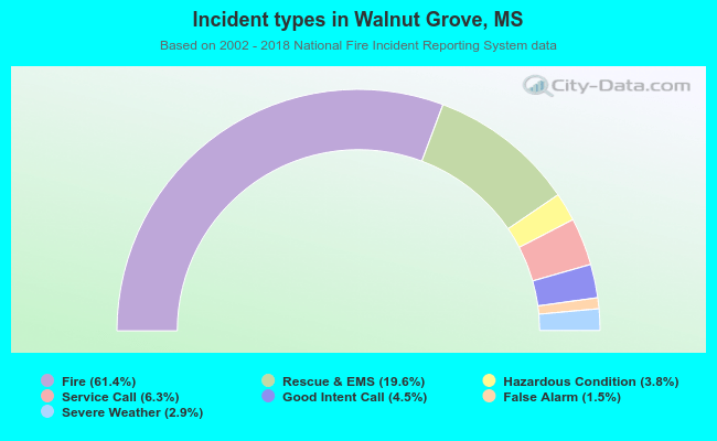 Fire incident types in Walnut Grove, MS