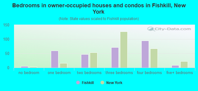 Bedrooms in owner-occupied houses and condos in Fishkill, New York