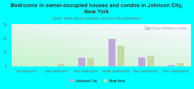 Bedrooms in owner-occupied houses and condos in Johnson City, New York