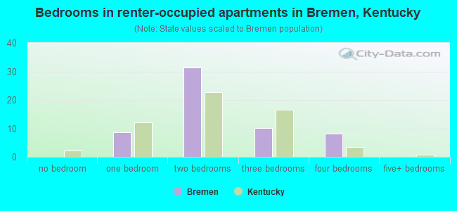 Bedrooms in renter-occupied apartments in Bremen, Kentucky