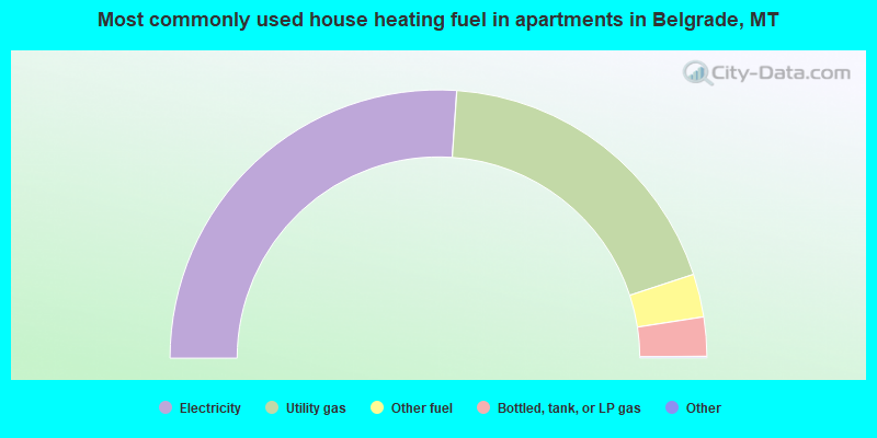 Most commonly used house heating fuel in apartments in Belgrade, MT