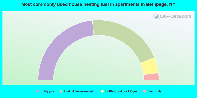 Most commonly used house heating fuel in apartments in Bethpage, NY