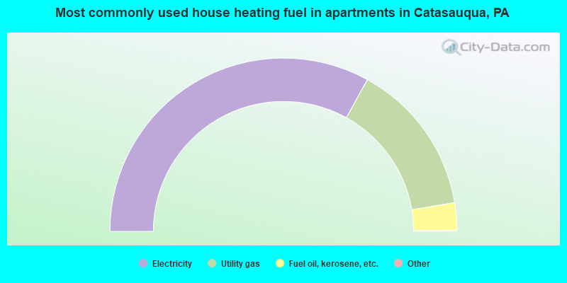 Most commonly used house heating fuel in apartments in Catasauqua, PA