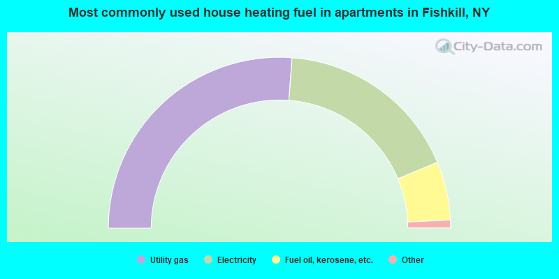 Most commonly used house heating fuel in apartments in Fishkill, NY