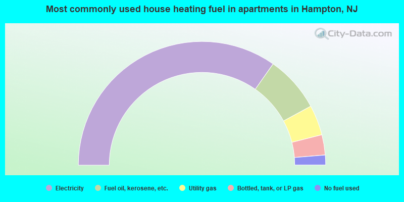 Most commonly used house heating fuel in apartments in Hampton, NJ