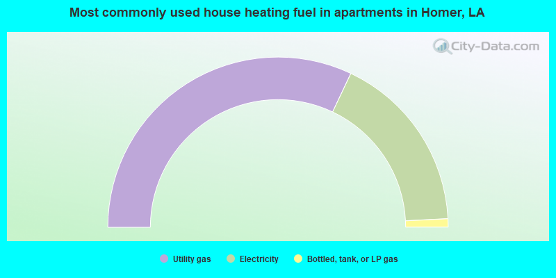 Most commonly used house heating fuel in apartments in Homer, LA