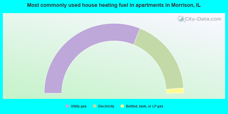 Most commonly used house heating fuel in apartments in Morrison, IL