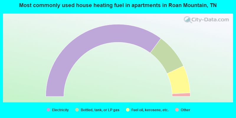 Most commonly used house heating fuel in apartments in Roan Mountain, TN