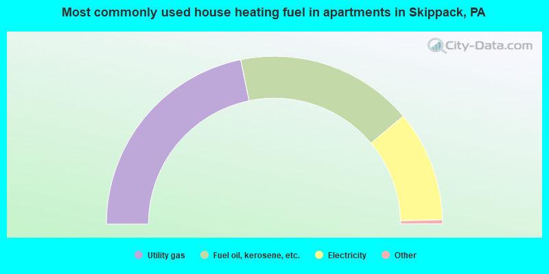 Most commonly used house heating fuel in apartments in Skippack, PA