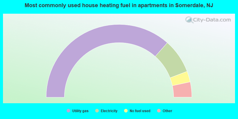 Most commonly used house heating fuel in apartments in Somerdale, NJ