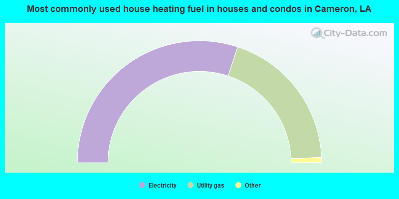 Most commonly used house heating fuel in houses and condos in Cameron, LA
