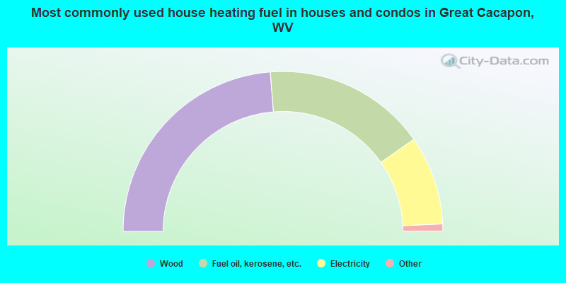 Most commonly used house heating fuel in houses and condos in Great Cacapon, WV