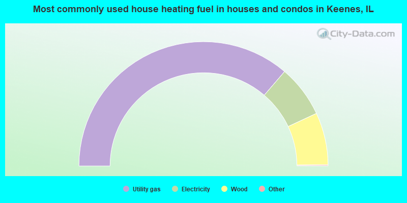 Most commonly used house heating fuel in houses and condos in Keenes, IL