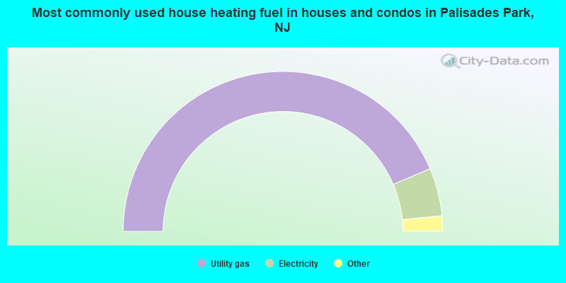 Most commonly used house heating fuel in houses and condos in Palisades Park, NJ