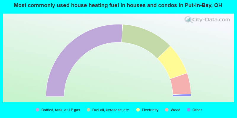 Most commonly used house heating fuel in houses and condos in Put-in-Bay, OH